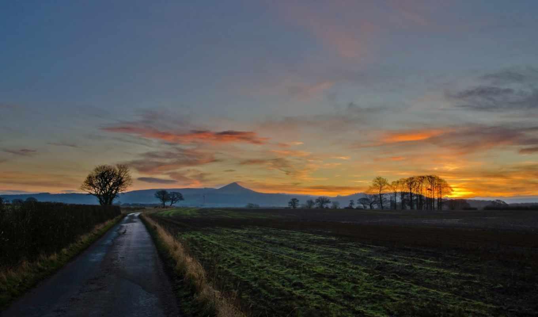 закат, поле, дорога, пейзаж, ветки, деревья, дерево, природа,