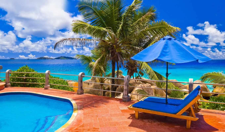 бассейн, шезлонг, море, взгляд, природа, palm, пальмы,