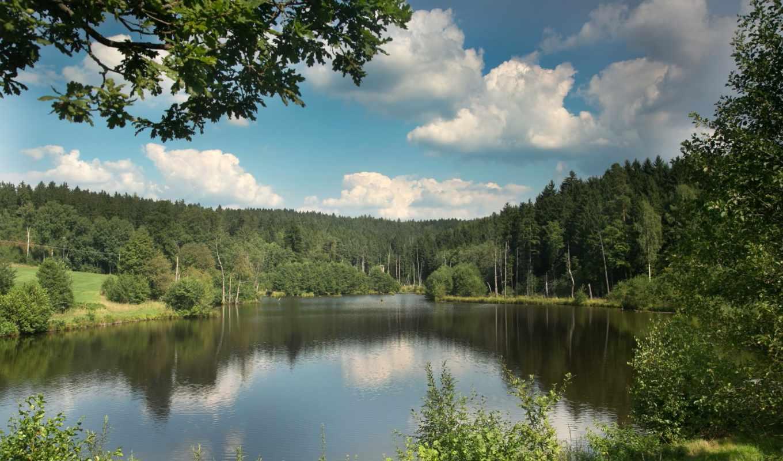 картинка, природа, леса, trees, реки, германия,