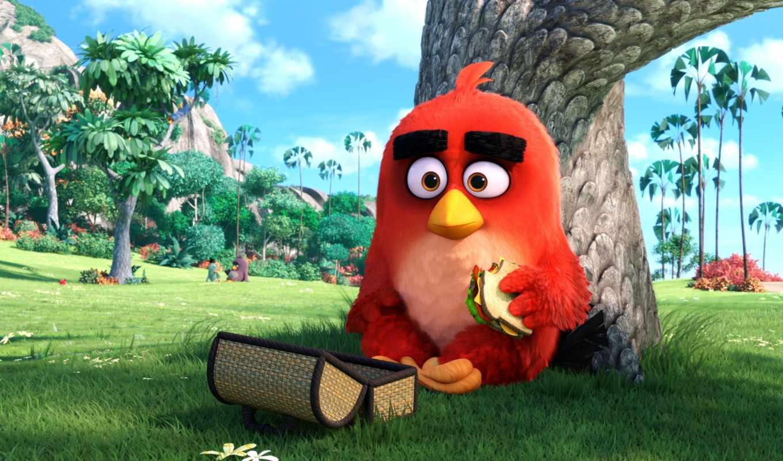 angry, birds, кинотеатр, movie, рамочка,