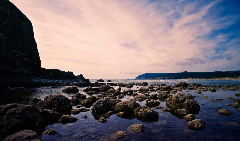 небе, птица, небо, пейзаж, more, oblaka, камни, птицы, берег, скала,