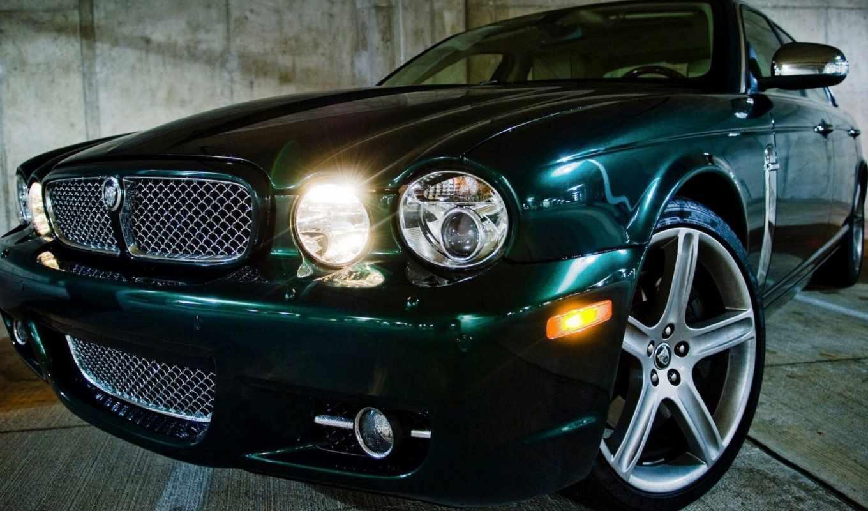 jaguar, ягуар, черный, смотрите, to,