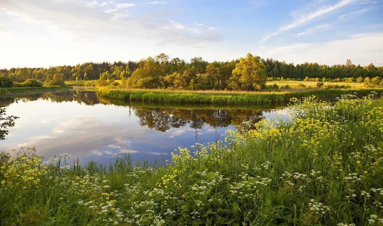 россия, природа, landscape, озеро, трава,