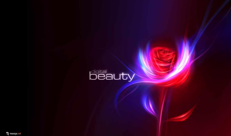 beauty, flower, red, rose, wide, desktop, ,