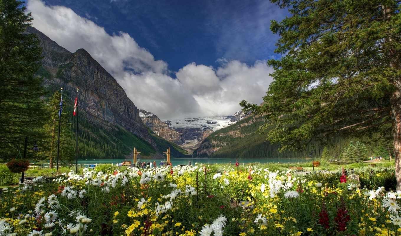 горы, цветы, природа, озеро, канадский, park, national, trees, banff, поляна, канада,
