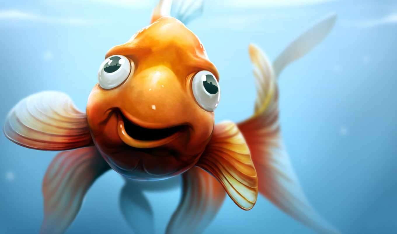 Картинка прикольная золотая рыбка, начало