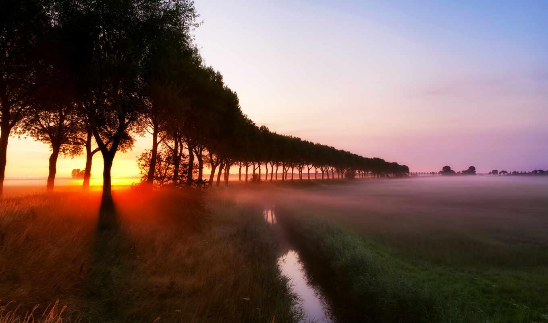 рассвет, туман, лучи, деревья, ручей, трава, картинка, природа, sunrise,