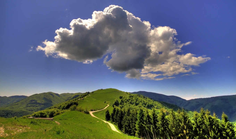 summer, природа, landscape, поля, холмы, лес,