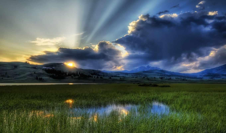 рассвет, камыши, sun, взгляд, утро, лучи, озеро, свет,