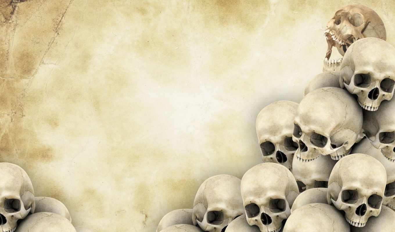 черепа, череп, текстура, смешные, хотите,