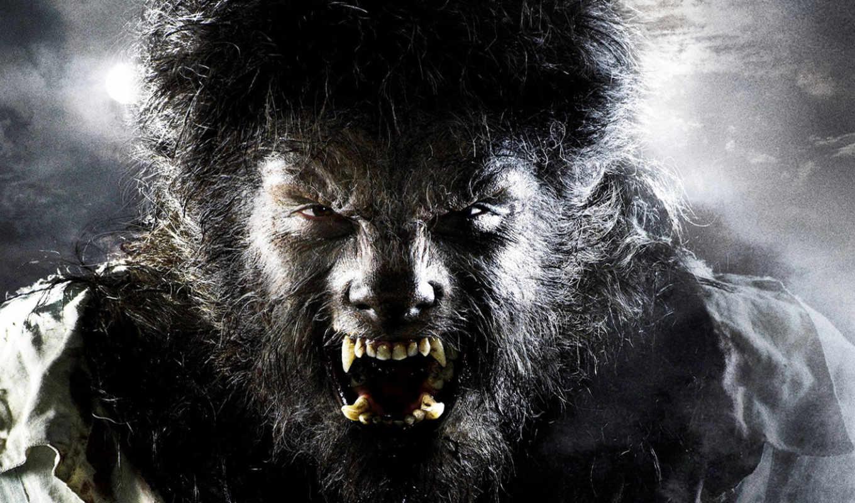 волк, мужчина, фильмы, wolfman, werewolf, формате, аватар, house, discover,