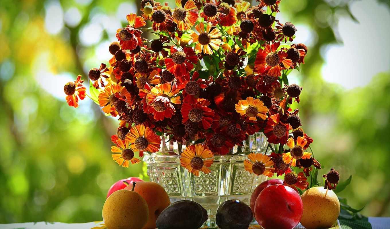 cvety, гелениум, букет, фрукты, осень,