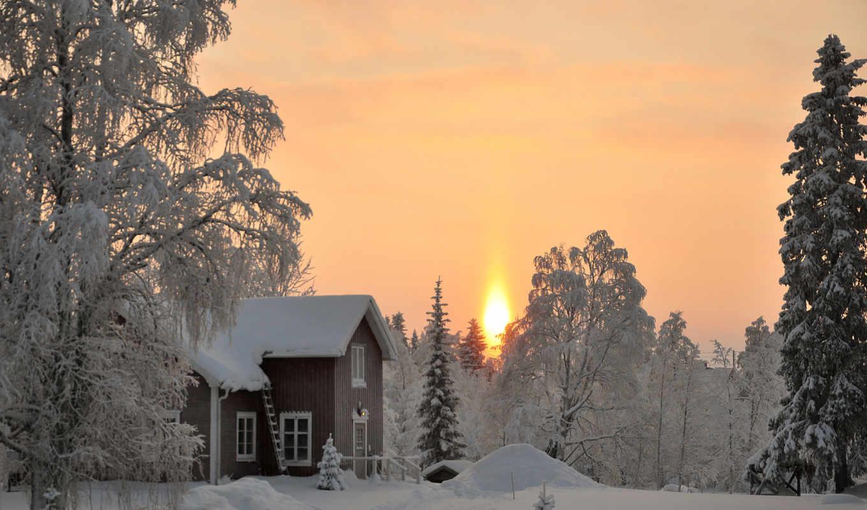 you, winter, hive, если, mind, ist, der, und, flickr,