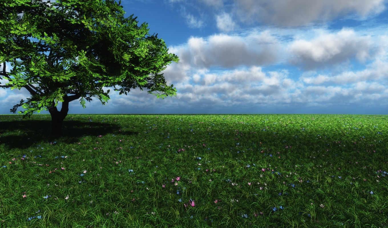 зелёный, land, природа,