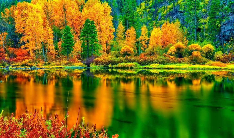 озеро, природа, water, лес, one, осень, trees, отражение, озера, склон,