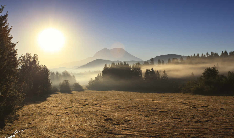 утро, поле, туман, landscape,