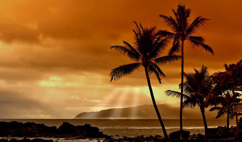 широкоформатные, нас, окружает, предпросмотр, природа, вышивки, которая, тропиках, jpeg, закат, схемы, богатые, тоже, плачут,