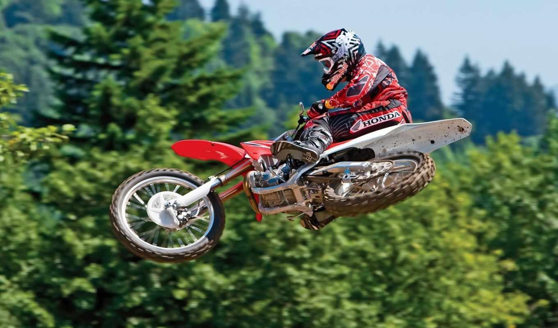 motocross, jump, free, download, спорт, картинка, мнгновение, кадр, момент, мотоцикл, небо, пролетая, картинку, деревья, desktop,