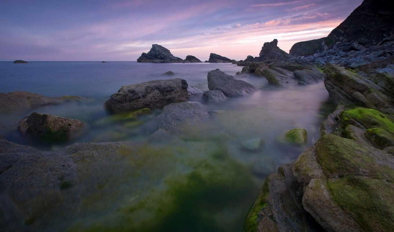 природа, мох, rock, камень, принадлежать, также, пляж