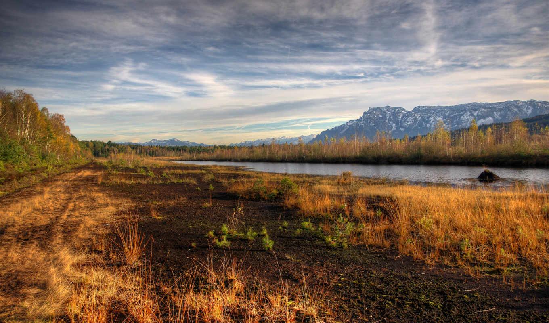 деревья, река, осень, лес, сухая, трава, прекрасными, природы, уголками,