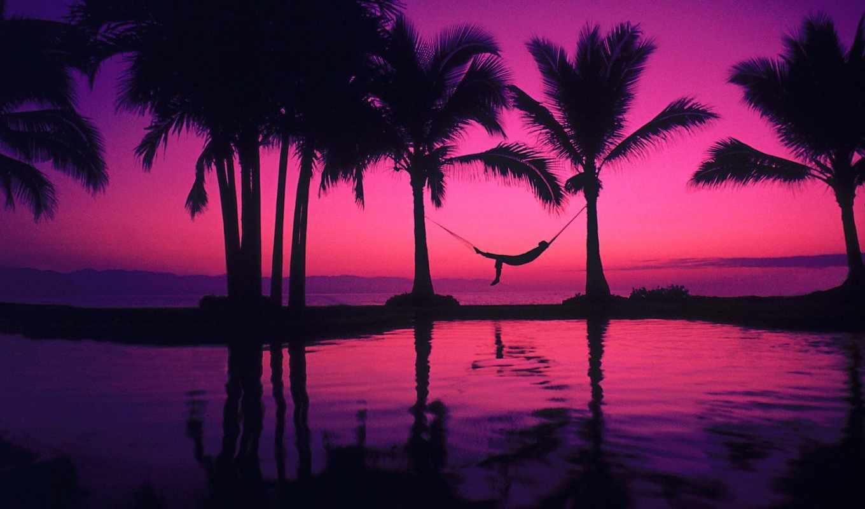 пальмы, картинок, коллекция, desktopwallpape, закат, гамак, tropics,