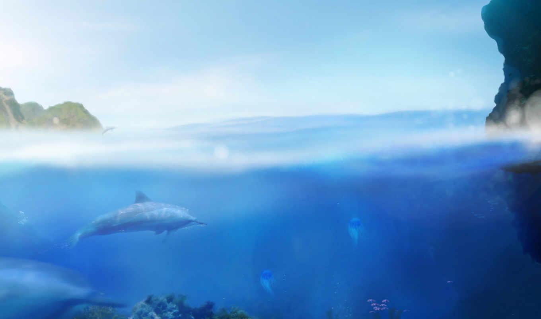 blue, big, dolphin, ecco, игры, besson, lúc, kickstarter, games, orioto, ipad, grand, remakes, iphone, bleu, обитатели, морские,