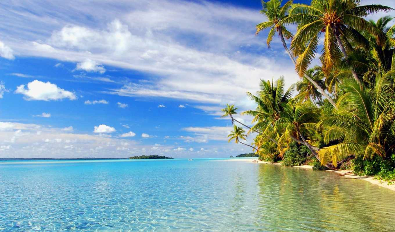 wallpaper, beach, tropical, wallpapers, and, hd, f
