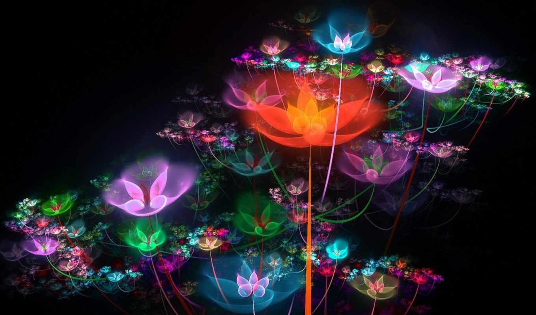 цветы, графика, splash, сказочный, леденые, аватар,