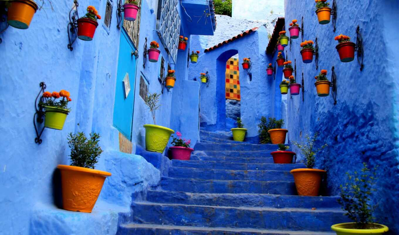 город, house, цветы, degree, ра, chefchaouen, tourist, улица, краска, турагентство