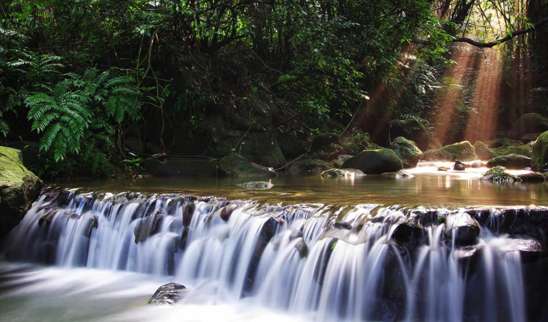 водопад, деревья, река, лес, nature, iphone, sun, streams,