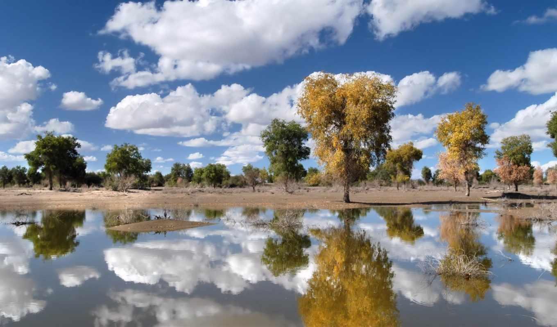 деревя, за, небо, природа, красивые, категория, озеро,