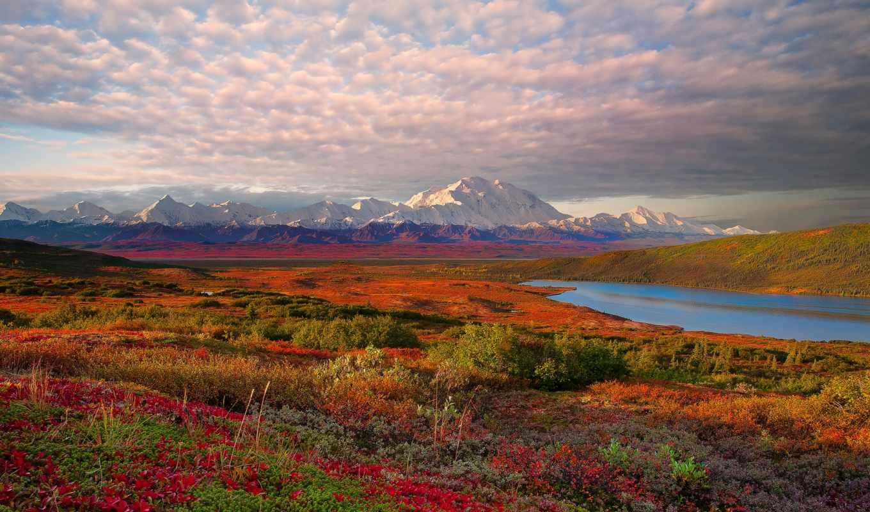 denali, park, national, аляска, озеро, tundra,