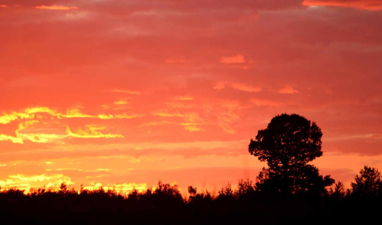 sunset, wallpaper, script, wallpapers, pictures, sky, free, показывать, эротику, hd, desktop, stunning, karışık, landscapes, resimler,