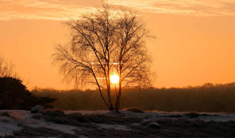 фотографии, закат, winter, красивые, заката, солнца, дерево, небо, животные, история, забавно, dminchi, красивое, красиво, космос, china, интересное, интересно,