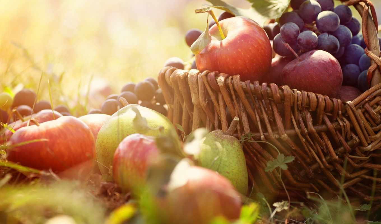 яблоки, виноград, корзина, трава, fruits, resolution, desktop, download, картинку, click,