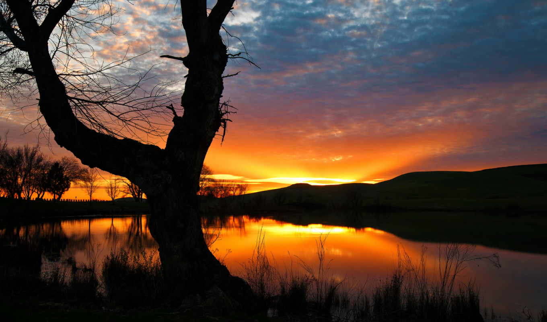 gelukkig, nieuwjaar, силуэт, oblaka, sun, картинка, фото, озеро,