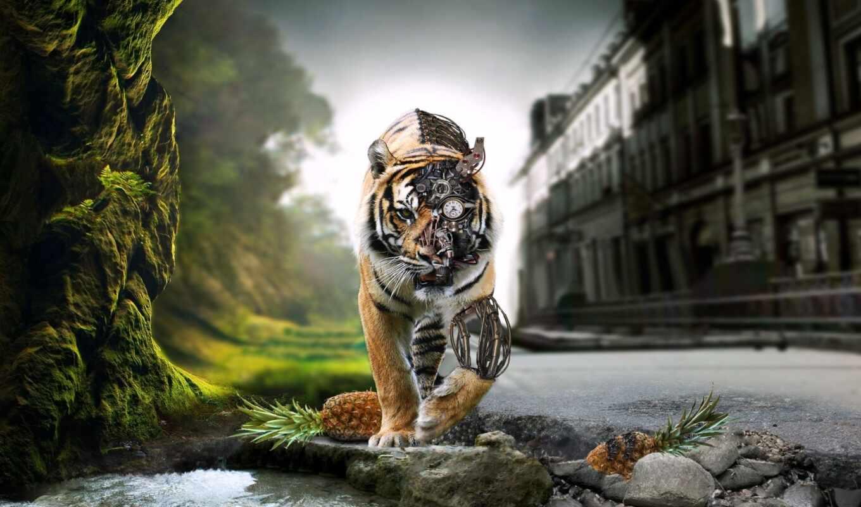 природа, civilization, тигр, joint