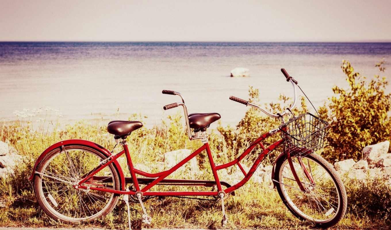 bike, природа, настроения, спорт, колесо, колеса,