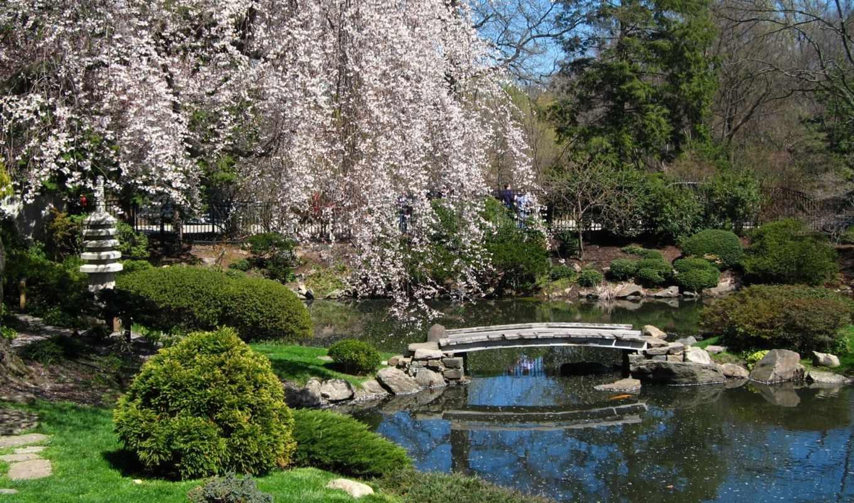 pack, park, парки, стиле, февр, экзотические, японском,