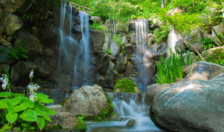 природа, деревья, речка, растения, водопад, камни,