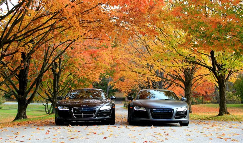 осень, ауди, машины, авто, деревья,