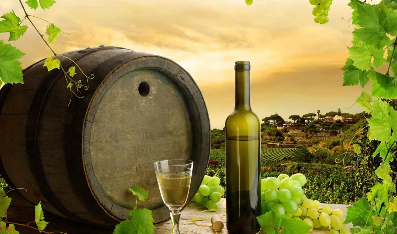 ,вино,бочка,бокал,бутылка,виноград,