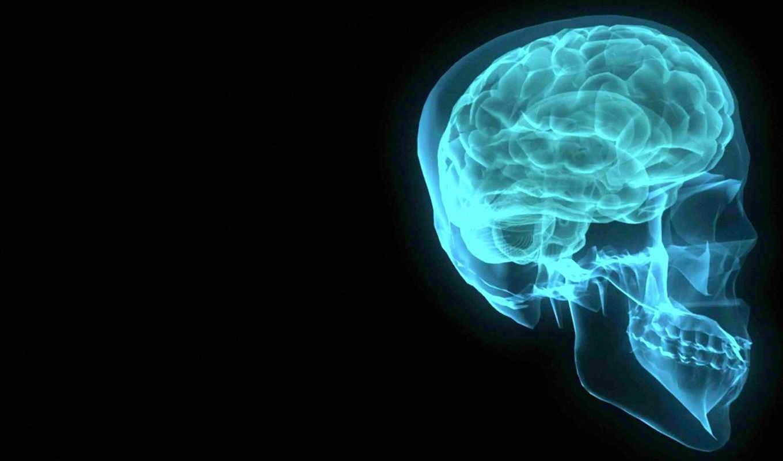 рентген, мозг, черный, череп, мозга, голубой, скелет, человек, зубы, голова, шпалери, шестеренки, челюсть,