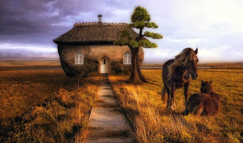 лошадь, степь, красивый, see, графика, природа, фон