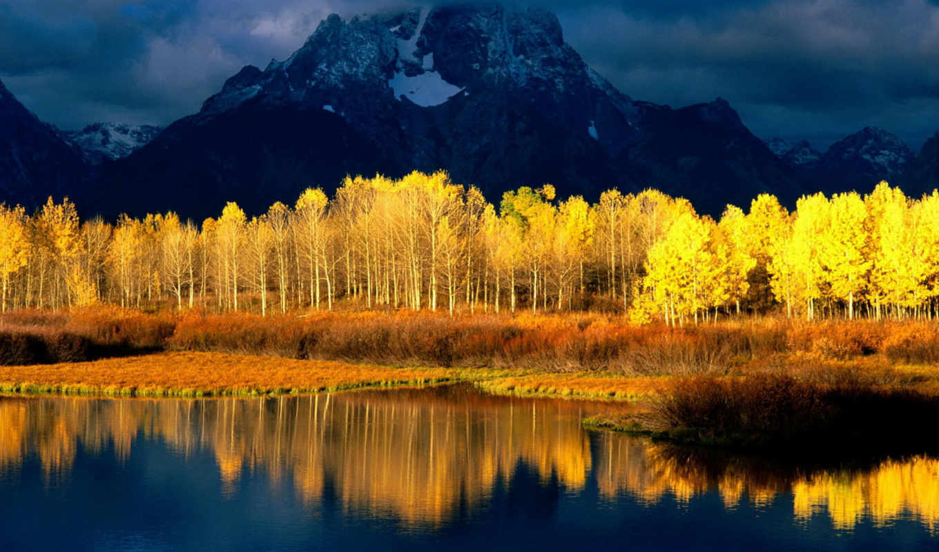 aspen, tetons, , grand, moran, mount, quaking,