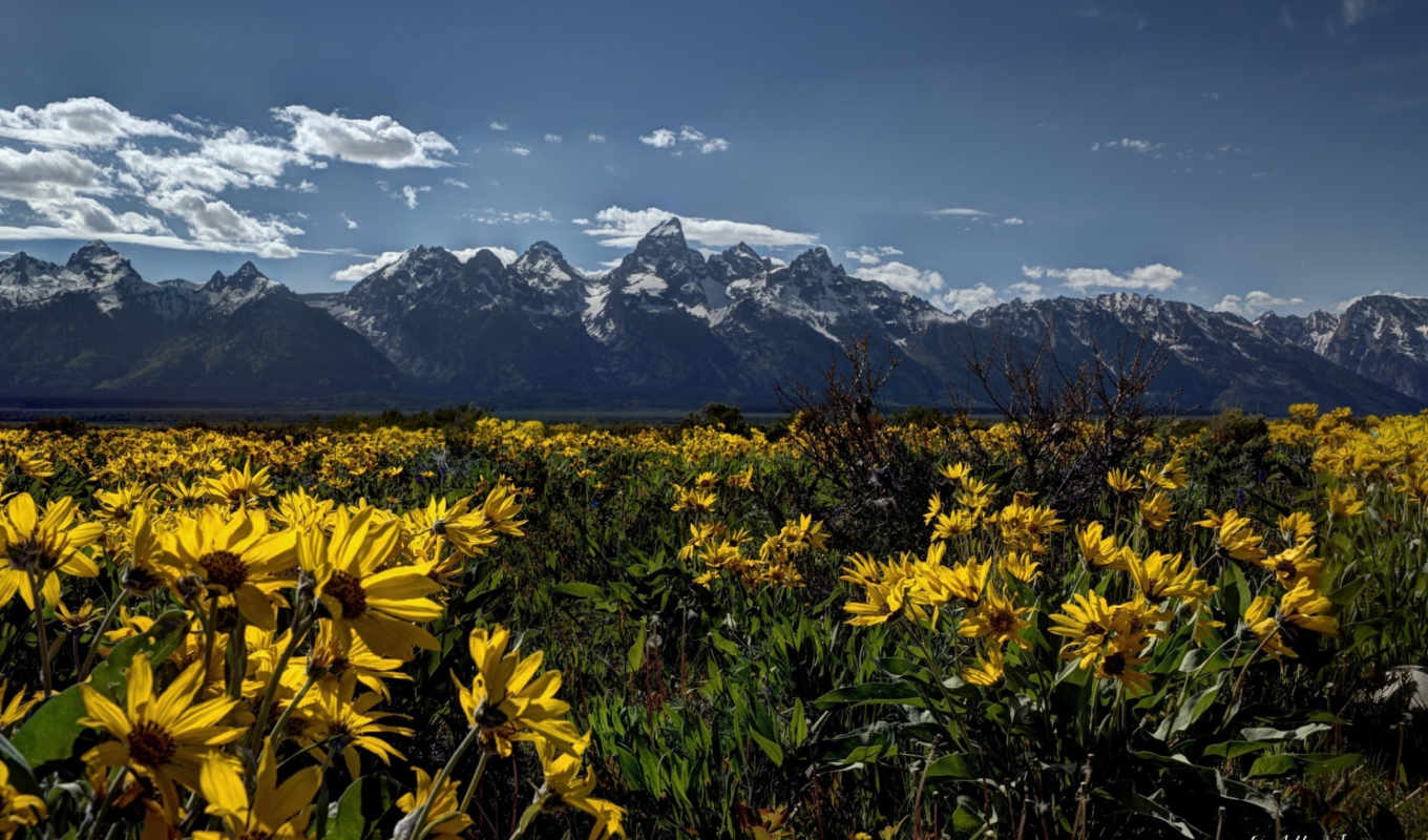 national, park, teton, grand, wyoming, природа, desktop, титон,