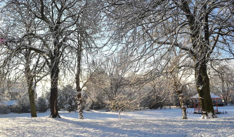 снег, природа, истинном, обою, размере, чтобы, посмотреть,