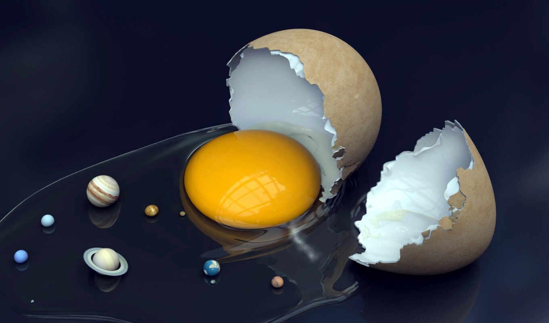 cкорлупа, желток, яйцо, система,