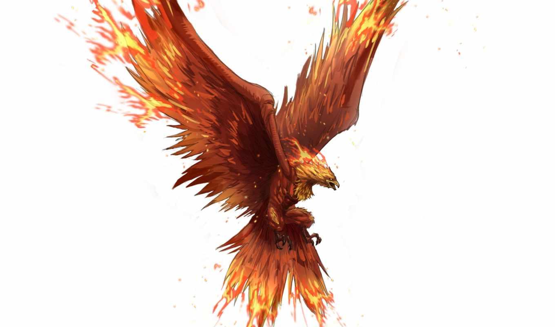 art, fantasy, phoenix, птица, полет, крылья, background, wings,