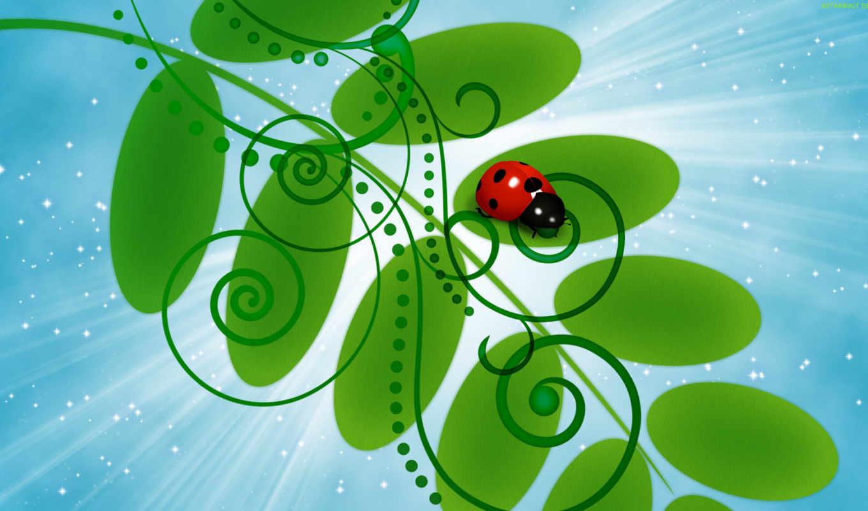 pantalla, fondos, mariquita, descargar, gratis, para, вектор, ladybug, htc, escritorio,